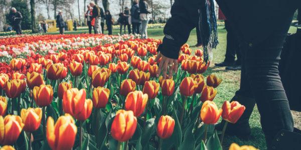 Quelle destination de vacances pour ce printemps (avec du cashback!)?